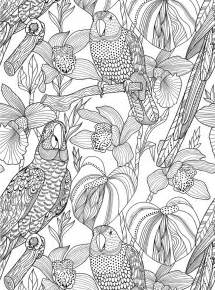 coloring books best 25 colouring pages free ideas on