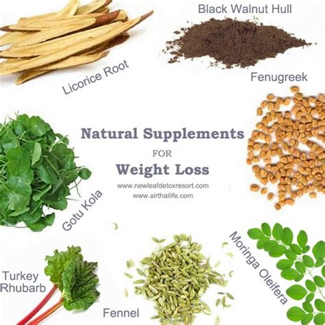weight loss herbs use these 10 herbs to lose weight naturally biggies boxers