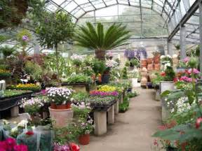 horsfields nursery at pot house hamlet garden nurseries in