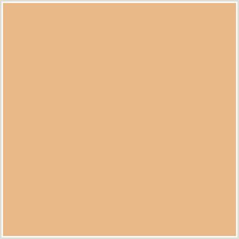 eab988 hex color rgb 234 185 136 gold sand orange