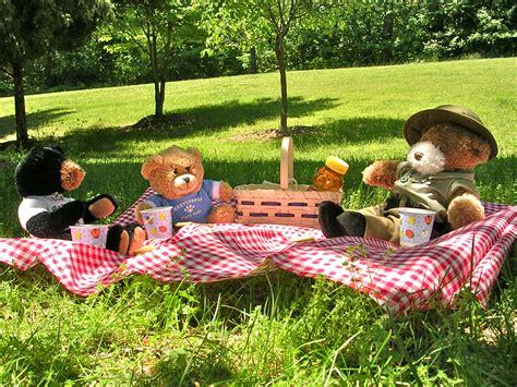le teddy bear picnic flickr photo sharing