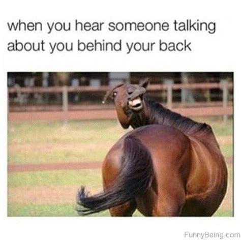 Funny Animal Memes Tumblr - 123 absolutely hilarious memes