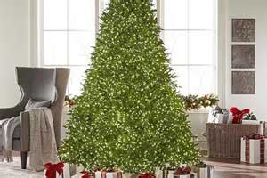home depot christmas tree return policy types of trees care tips the home depot canada