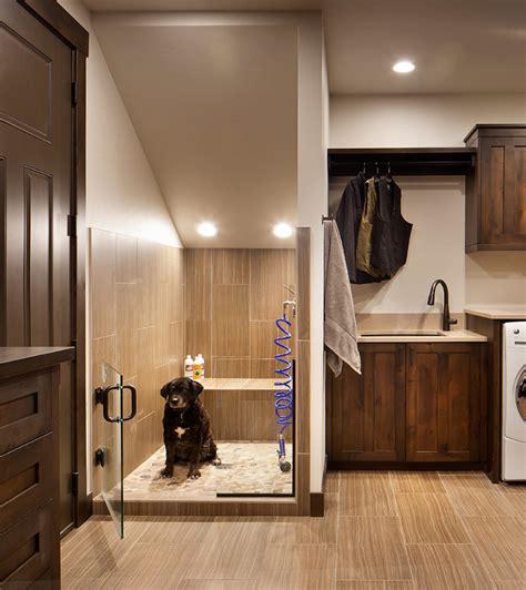 lavanderias  dog shower um sonho  quem tem