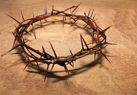 passion of the christ crown of thorns www pixshark com