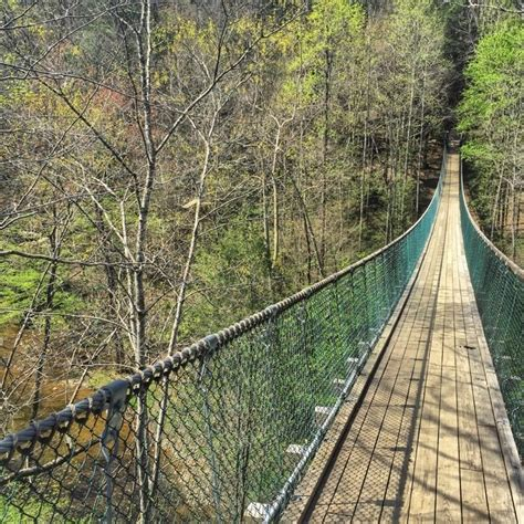 swinging bridge tennessee stomach dropping tennessee swinging bridge
