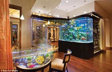 aquarium design for house interesting things for you late night 03 06 09