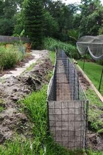 Backyard ideas for gabion walls diane and dean diy