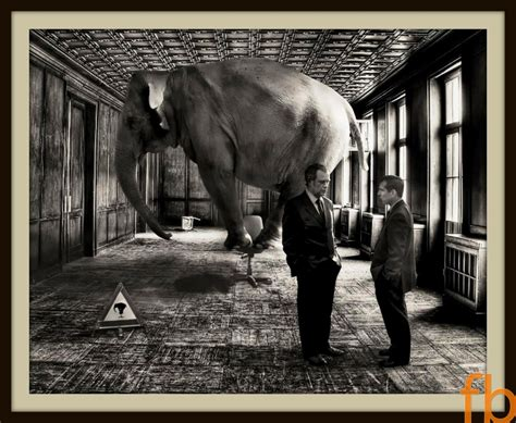 elephant in the room inflammation the elephant in the room