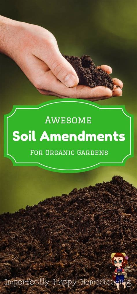 The 25 Best Organic Gardening Ideas On Pinterest What To Add To Vegetable Garden Soil