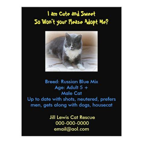 adoption flyer template cat adoption template flyer zazzle