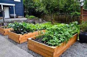 patio vegetable garden ideas charming decoration container vegetable garden ideas patio
