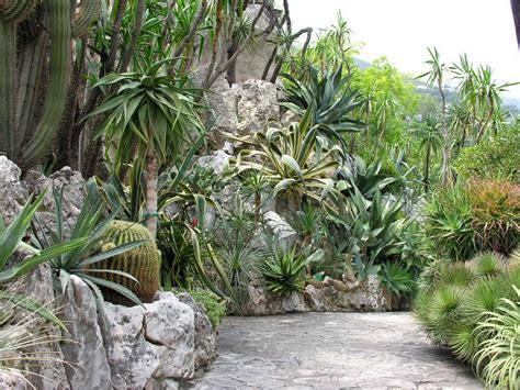giardino botanico montecarlo giardino esotico di monaco monaco 98000 alpes