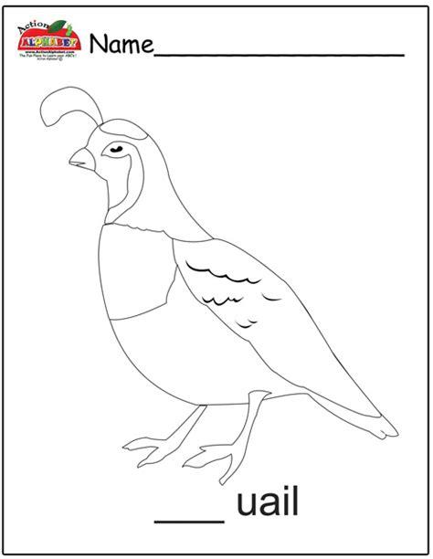 quail coloring page preschool letter q activities preschool lesson plans
