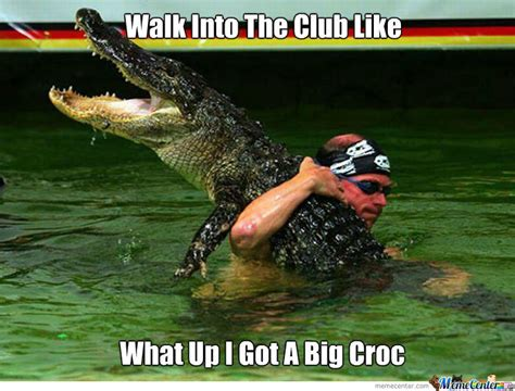 Crocodile Meme - big croc by xshadowxwolfx meme center