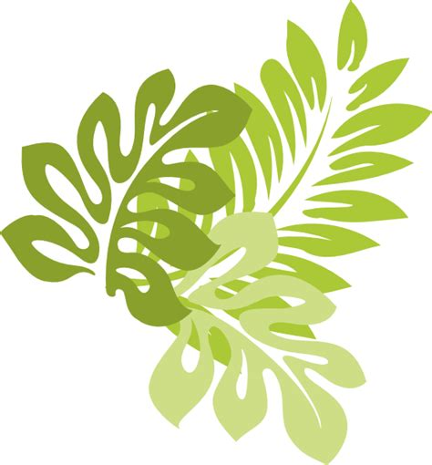 jungle leaves vector  getdrawingscom