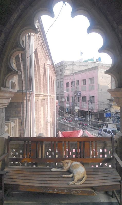 lahore high court rawalpindi bench panoramio photo of taking nap on a bench in lahore high