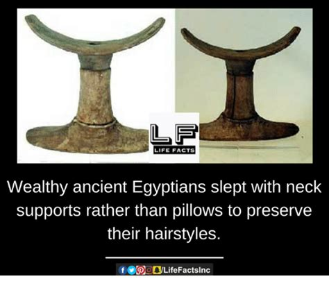 Ancient Egyptians Slept On Pillows Made Of by 25 Best Memes About Preserve Preserve Memes
