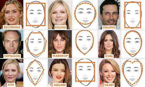 celebrity face meaning scientists have identified nine distinct face shapes five