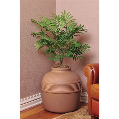 cat kitty litter box decorative palm planter pot plastic