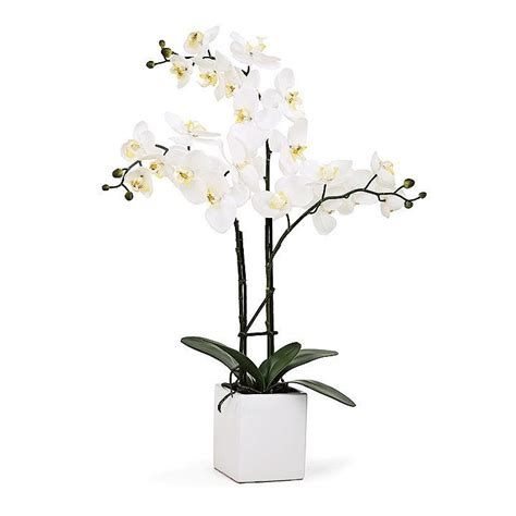potted orchid centerpieces best 25 potted orchid centerpiece ideas on