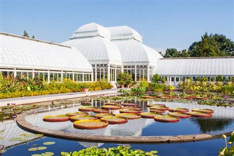 new botanical gardens guide to the new york botanical garden