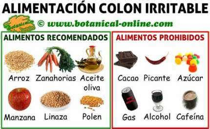alimentos que provocan inflamacion intestinal dieta para el colon o intestino irritable