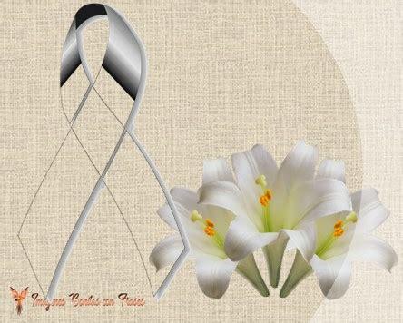 imagenes rosas blancas de luto mo 241 os de luto con rosas negras para expresar duelo y