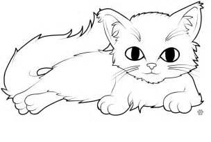 colour kitty csinorman deviantart