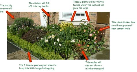 Easy Landscaping Ideas For Beginners How To Get A Low Maintenance Border In Your Garden