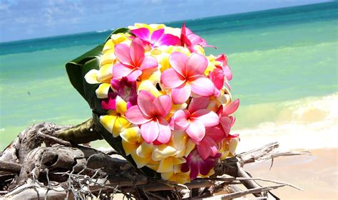 Tropical Wedding Flowers by The Heavenly Looking Tropical Wedding Bouquets