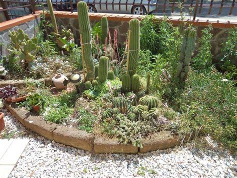 giardini con piante grasse giardini piante grasse piante grasse realizzazioni con