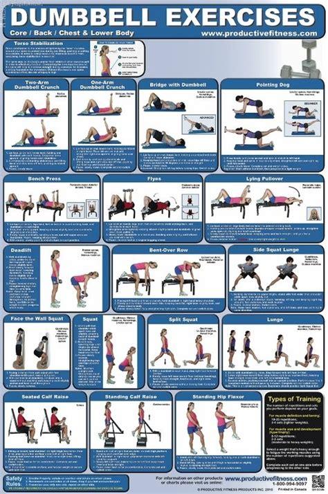 dumbbell exercise poster 1