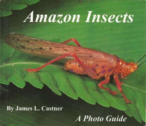 mosquitos snowbirds other florida pests books feline press