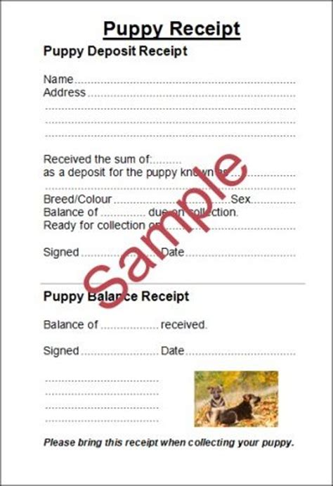 puppy receipt template uk syntax sue medley printing and websites for cat and
