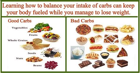 wish to cut carbs find 30 low carb recipes to beat the hunger books diet tips for getting lean met rx review
