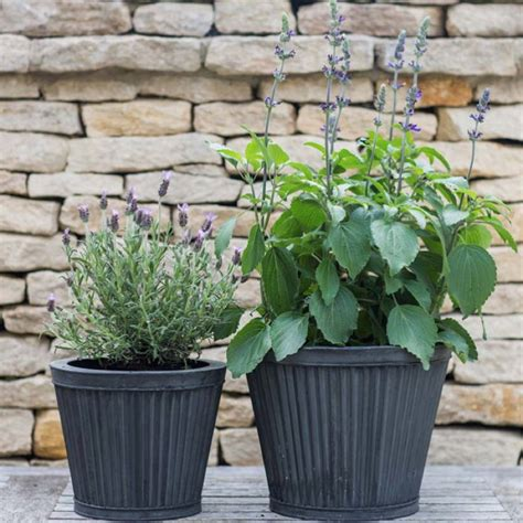 Table Top Planters by Set Of Two Tapered Table Top Planters By All Things