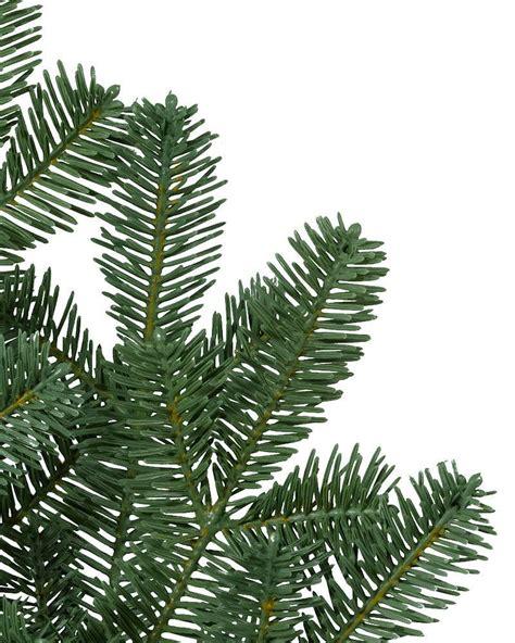 balsam tree balsam fir trees balsam hill