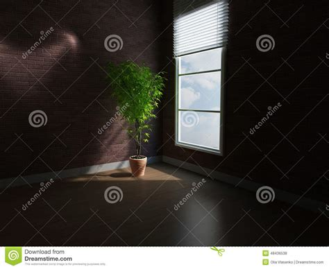 plants for a dark room a plant in a dark room stock illustration image 48436538