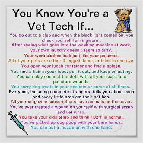 60 best vet humor images on adorable animals
