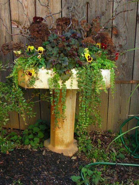 Great Planters by Great Planter Out Of Vintage Sink Gardening Perennial