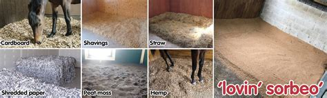 types of bedding different types of horse bedding sorbeo