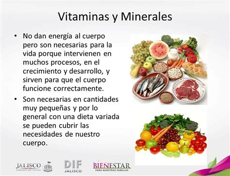 proteinas y minerales alimentaci 243 n la alimentaci 243 n es el conjunto de acciones