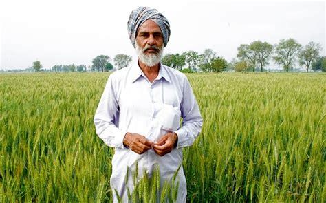 farmer s farmers on topsy one
