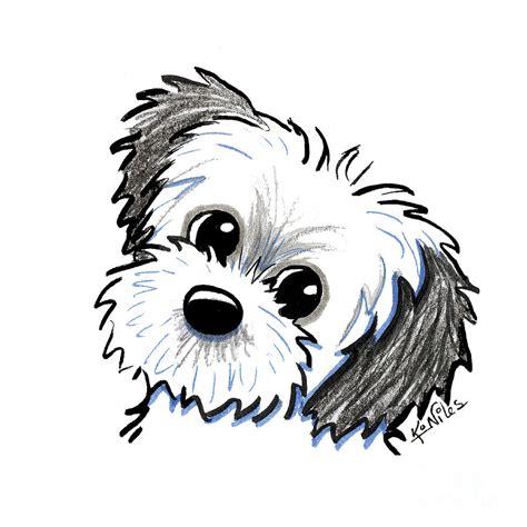 shih tzu drawings kiniart shih tzu cutie drawing by niles