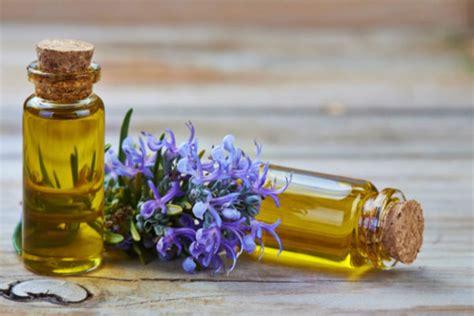 Minyak Ikan Dan Manfaatnya 113 manfaat dan khasiat minyak rosemary bagi kesehatan