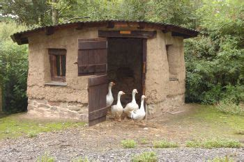 duck house ideas 37 free diy duck house coop plans ideas that you can easily build