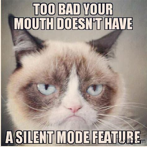 Grumpy Cat Meme Pictures - the gallery for gt clean grumpy cat memes