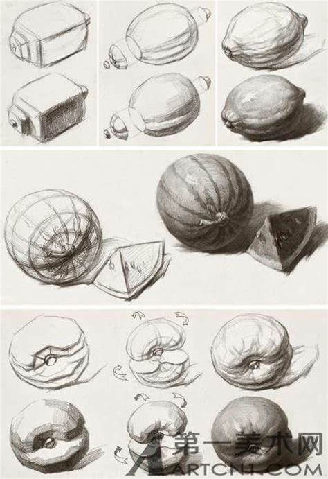 Drawing Exercises by 158 Best Images About Still Drawings On