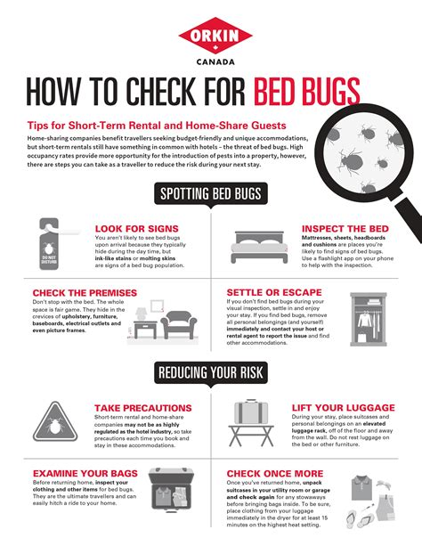 How To Avoid Bed Bugs by How To Avoid Bringing Home Bed Bugs This Season